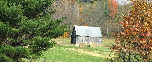 You Can Sell Your Home for More If It Looks Like a Barn