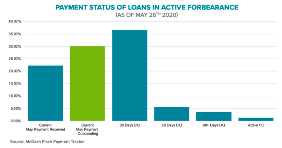 forbearance payment status